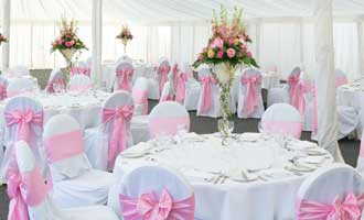 CHAIR COVERS & DRAPES