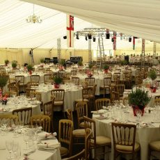 2. Gold Banqueting Chairs