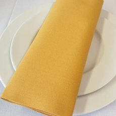 22. Plain Gold Napkin