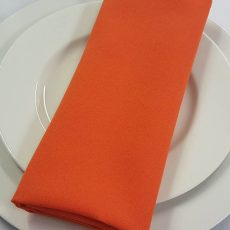 23. Burnt Orange Plain Napkin