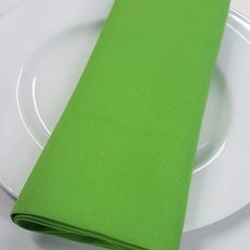 27.Plain Lime Green Napkin