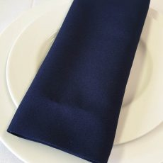 28. Navy Blue Plain Napkin