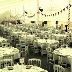 4. Silver Banqueting Chairs