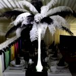 Lit Feather Plume- Black & White